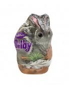 Bilby Bunny